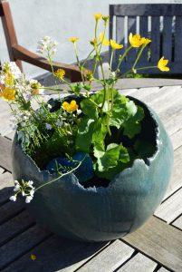 unikke skåle til vand planter