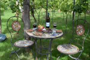 Tapas i vingården